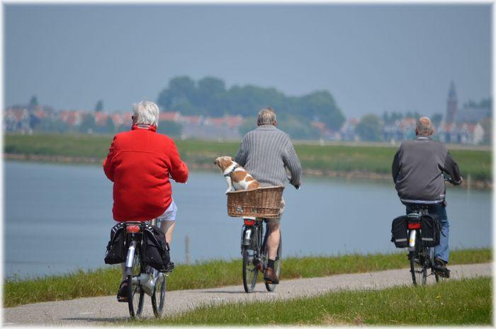 Seniorzy na rowerze na wakacjach