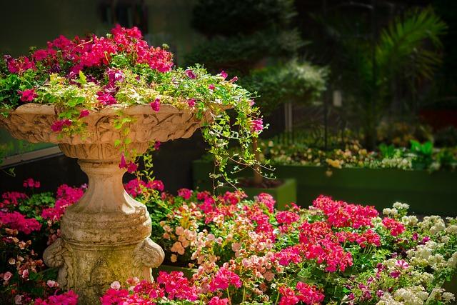 Ogrod z różowymi kwiatami