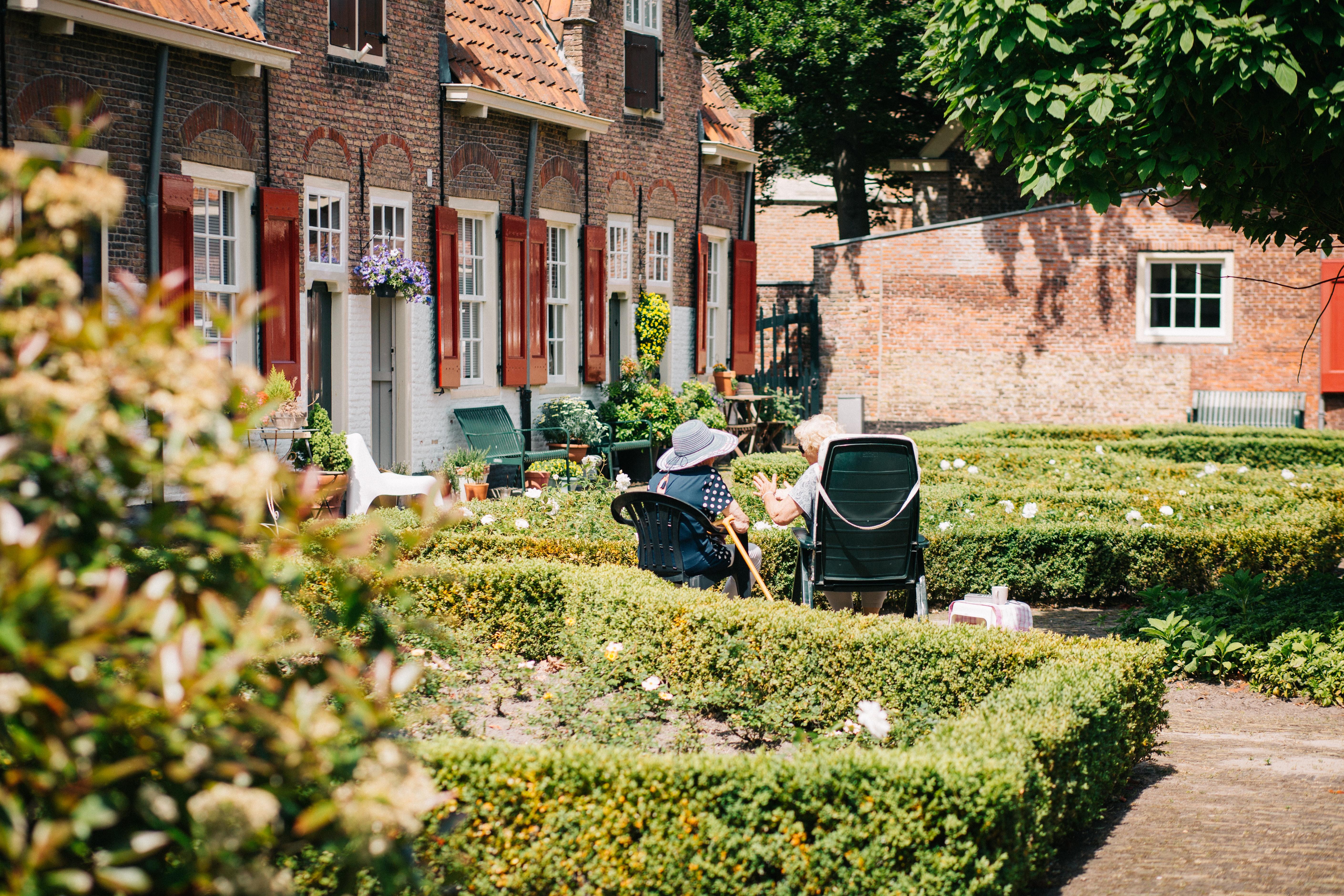 Starsze panie siedzą w ogródku