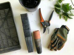 Rękawiczki ogrodowe